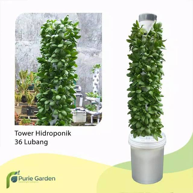 Starter Kit Hidroponik Tower Vertical Garden 40 Lubang Shopee Indonesia