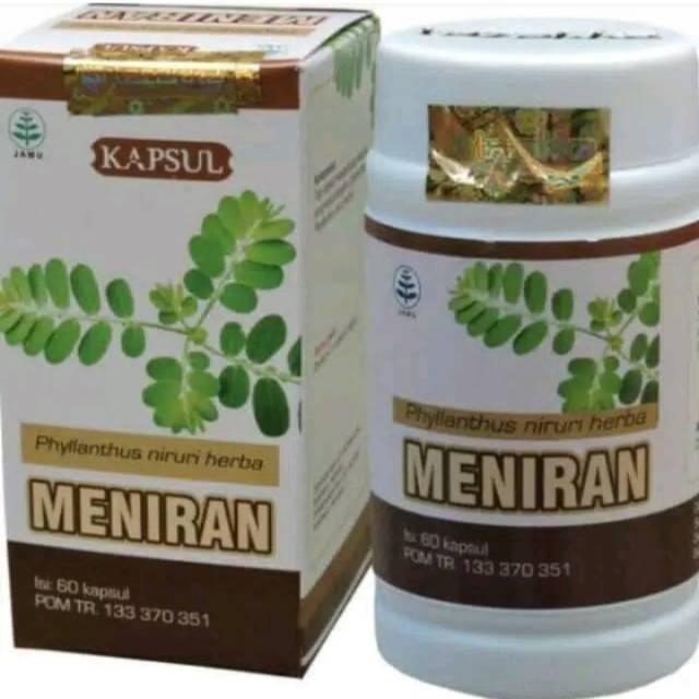 Herbal Meningkatkan Dan Memelihara Daya Tahan Tubuh Dengan Kapsul Meniran Tazakka Alami Berkualitas Shopee Indonesia