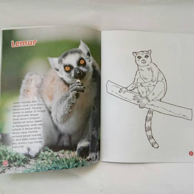 8800 Koleksi Gambar Binatang Berkaki Dua Gratis Terbaru