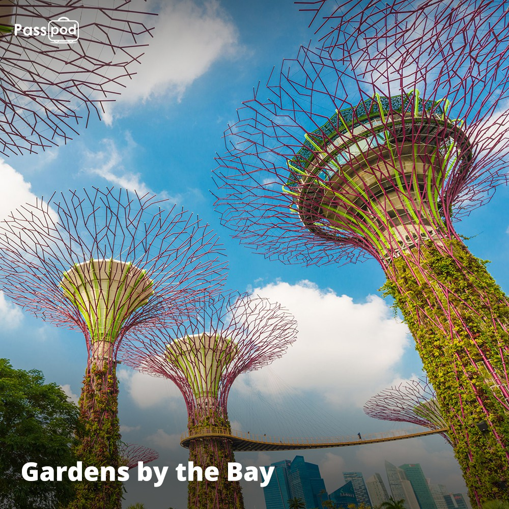 Tiket Gardens By The Bay Singapore E Ticket Shopee Indonesia