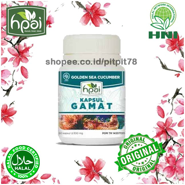 DC/ PSD - KAPSUL GAMAT HPAI Obat Herbal Untuk Mempercepat ...