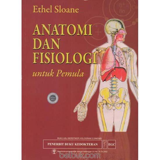 300+ Gambar Cover Buku Dari Bacaan Yang Berjudul Otot Manusia  Gratis