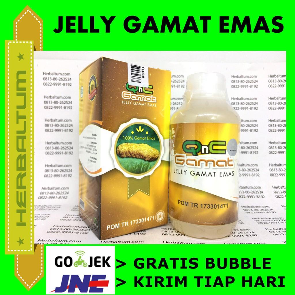 Obat Jelly Gamat Qnc Suplemen Kesehatan Alami Dari Teripang Emas Best Seller Gold G 500m Shopee Indonesia