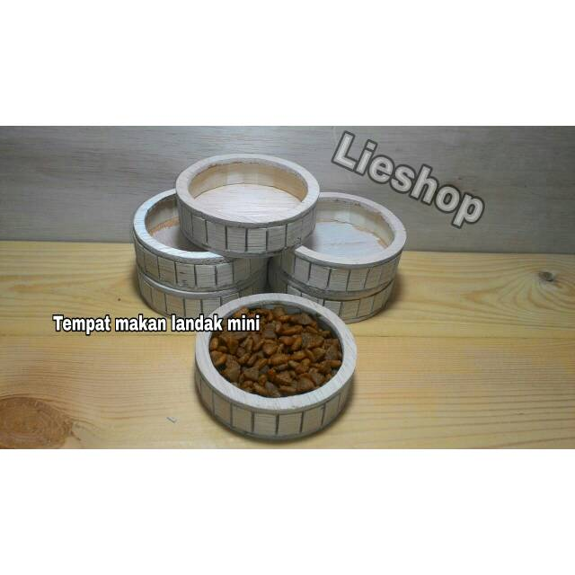 Tempat Makan Landak Mini Hedgehog Shopee Indonesia
