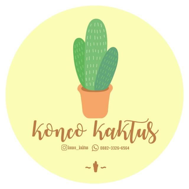 Kaktus Mini Shopee Indonesia