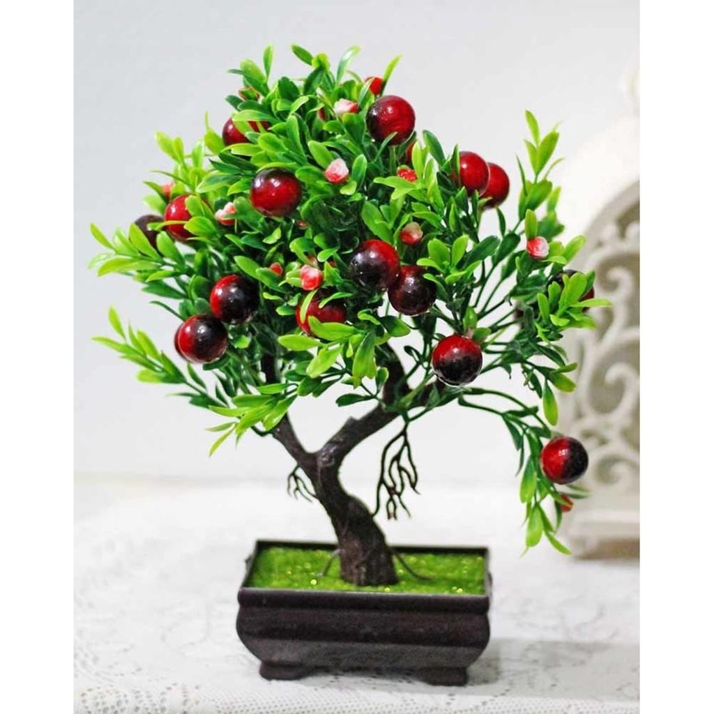 Best Produk pohon bonsai hiasan hias plastik artificial cherry ceri cery  tree A1      9df7161aca