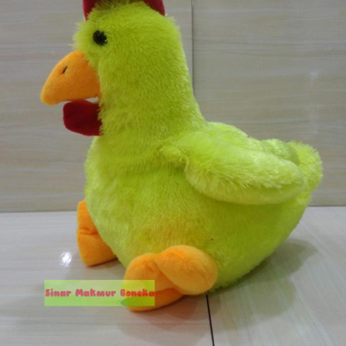 Download 740+ Gambar Ayam Yang Lucu Paling Lucu
