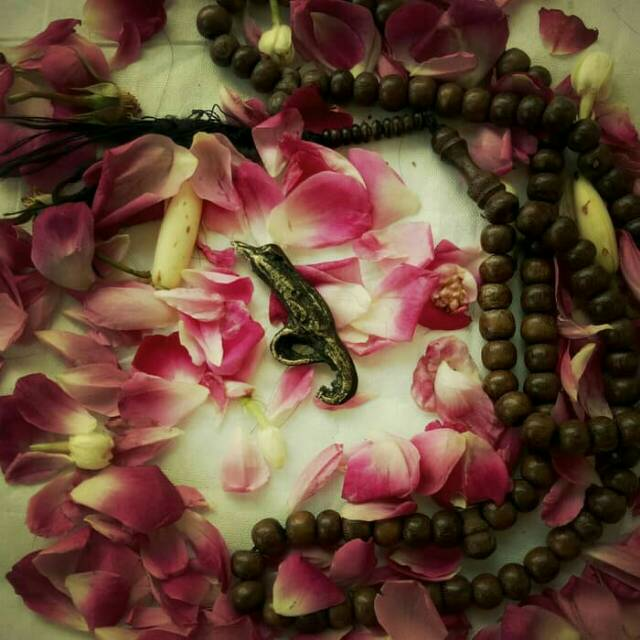 Azimats Kuncup Bunga Kantil Kencana Shopee Indonesia