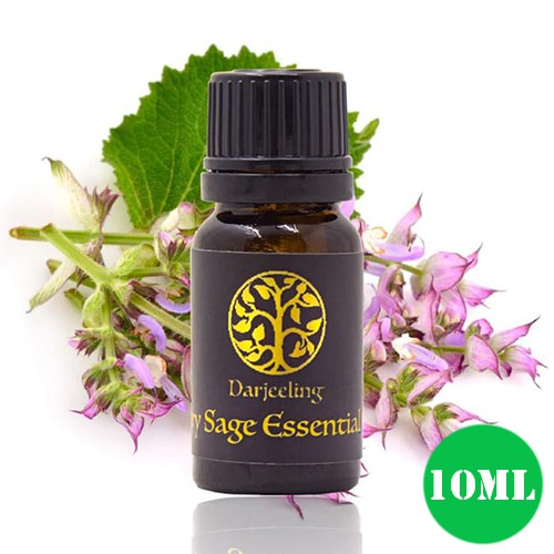 Darjeeling Peppermint Essential Oil | Minyak Daun Mint - 5ml / 10ml / 30ml | Shopee Indonesia