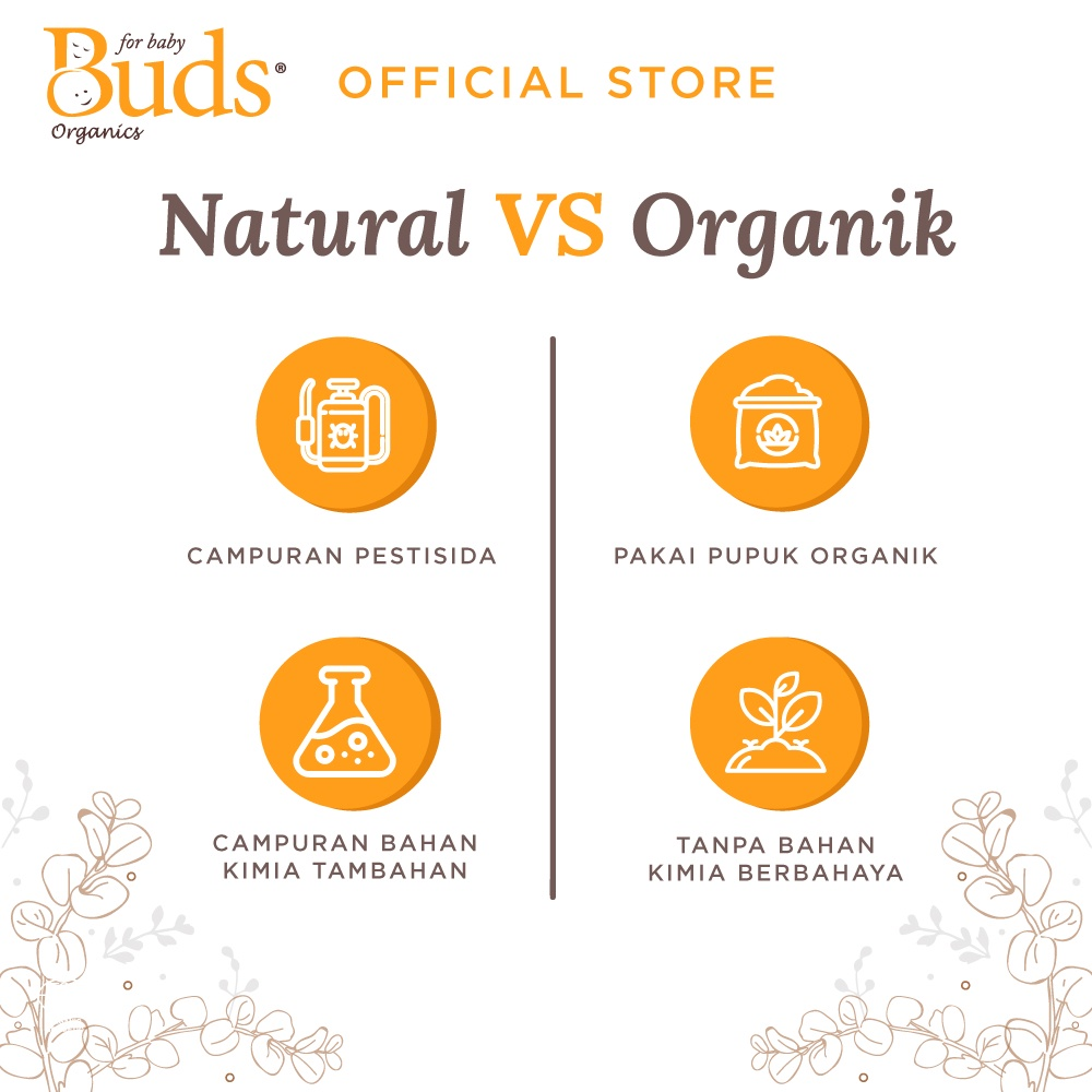 Buds Organics BFK - Orange Shampoo 350ml - Shampoo Anak Organik-4