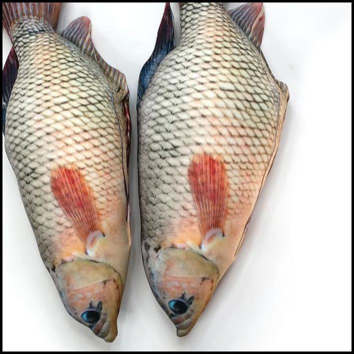 Ekslusif Boneka Ikan Gurame Untuk Penggemar Gurami Goreng Paling Murah Shopee Indonesia