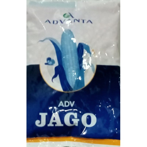 ADV Jago (varietas PAC 789)/PAC Raksasa
