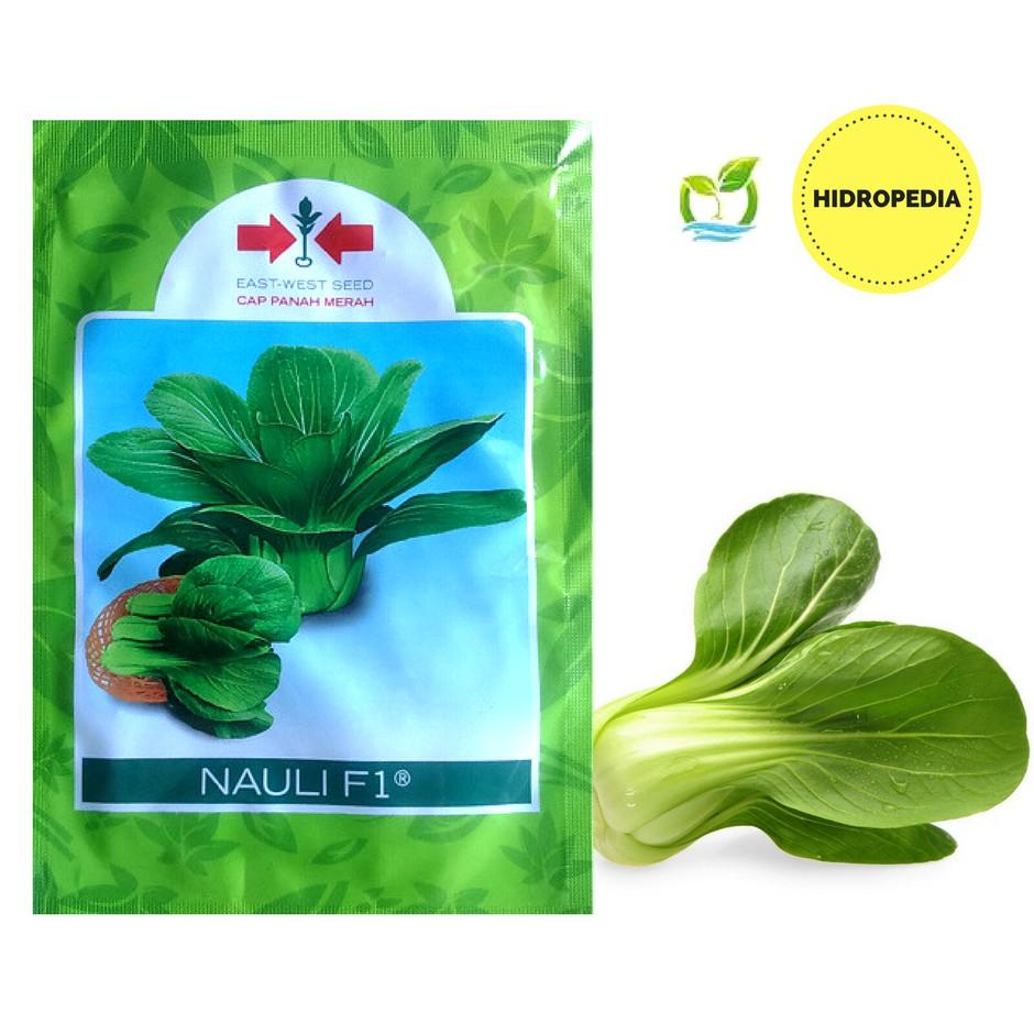 10 Benih Bibit herbal Basil Red Leaved F1 tanaman obat / Sayuran basil ungu / merah Mr Fothergills | Shopee Indonesia