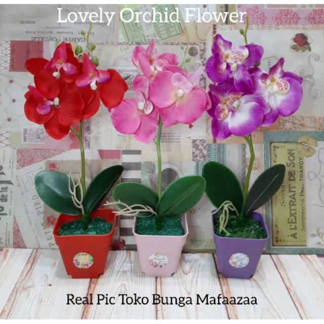 Bunga Anggrek Pot Plastik Orchid Flower Anggrek Bulan Artificial Orchid Decoration Shopee Indonesia