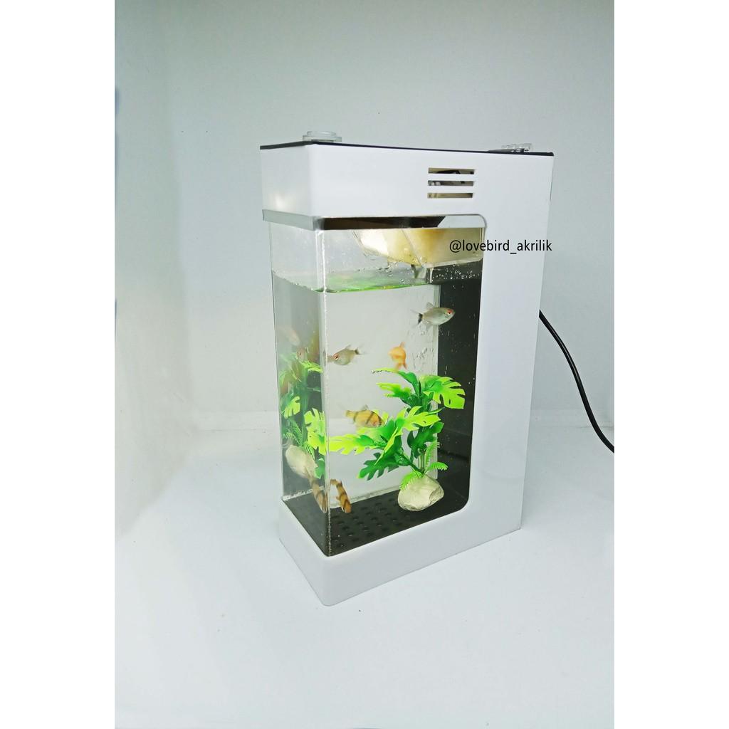 Aquarium Akrilik Aquarium Acrylic Acrylic Aquarium Aquarium Mini Akrilik Aquarium Ikan Hias Shopee Indonesia