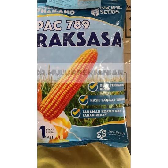 Produk Terbaik Benih Jagung hibrida PAC 789 RAKSASA 1Kg Pacific Seeds. .. . ..