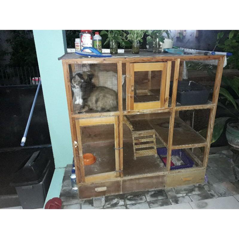 Kandang kucing bekas dari kayu, tingkat