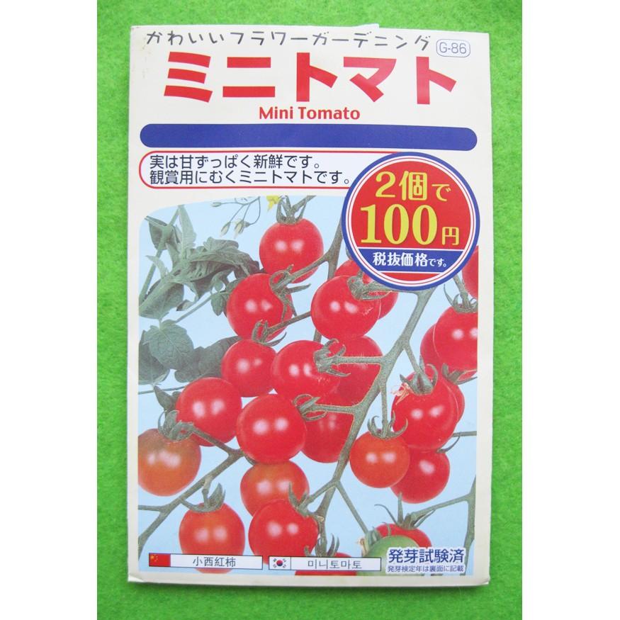 Benih Biji Tomat Mini Tomato Pack - Import Jepang