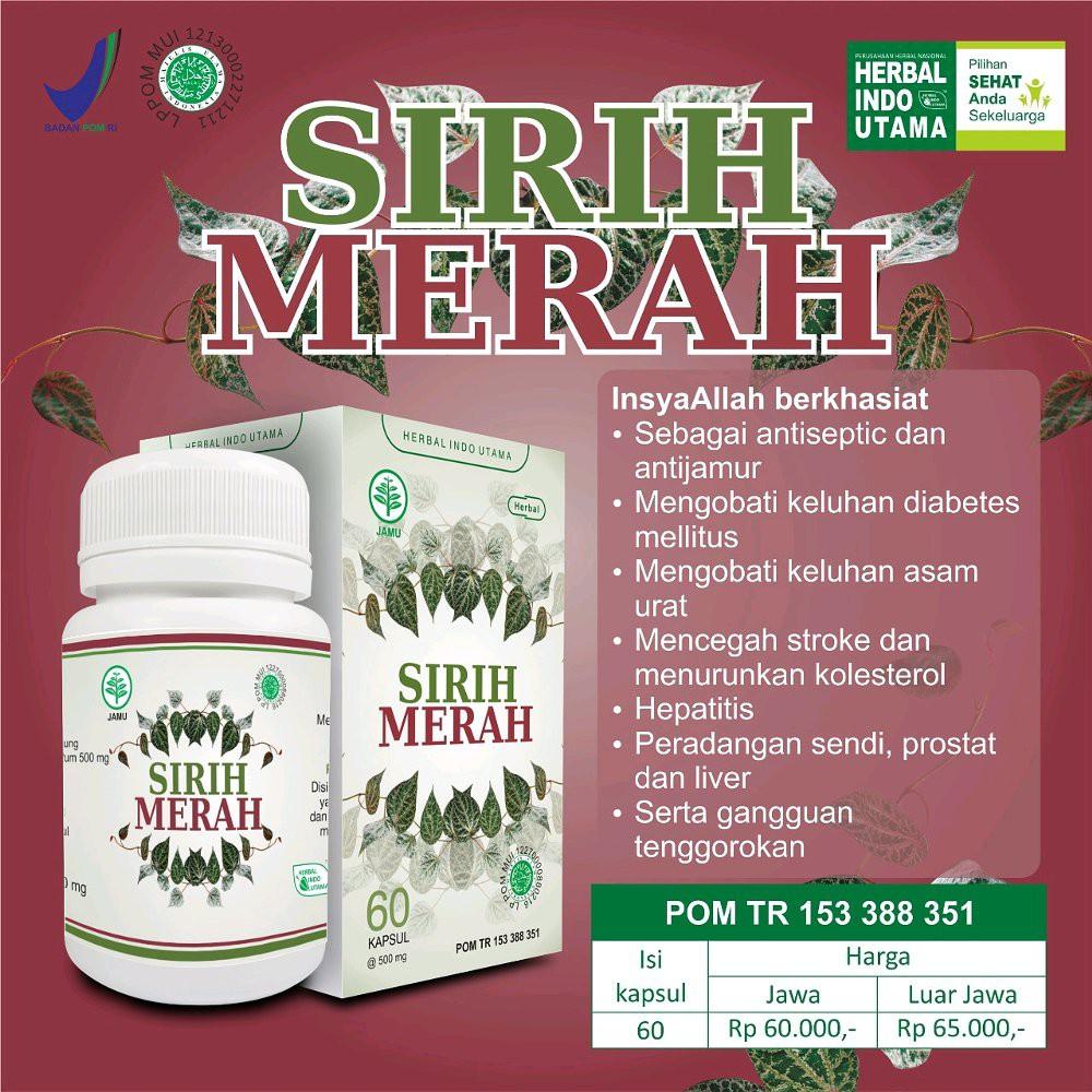 Sirih Merah 60 Kapsul Herba Medika Shopee Indonesia Sarang Semut Herbamedika