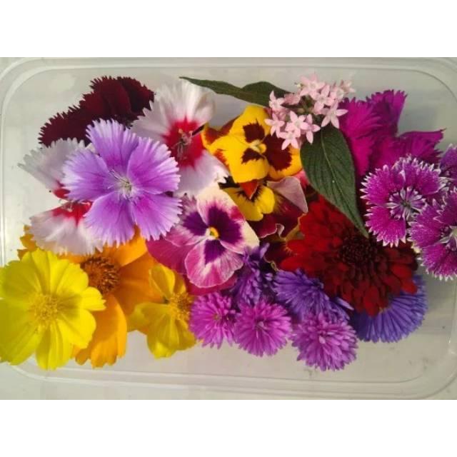 Promo Big Mix Edible Flower Komplet 12 Macam Bunga Exclusive