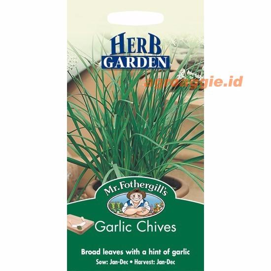 pack 750 benih herbal Chives F1 Mr. Fothergills Bibit tanaman obat / herb / Sayuran | Shopee Indonesia