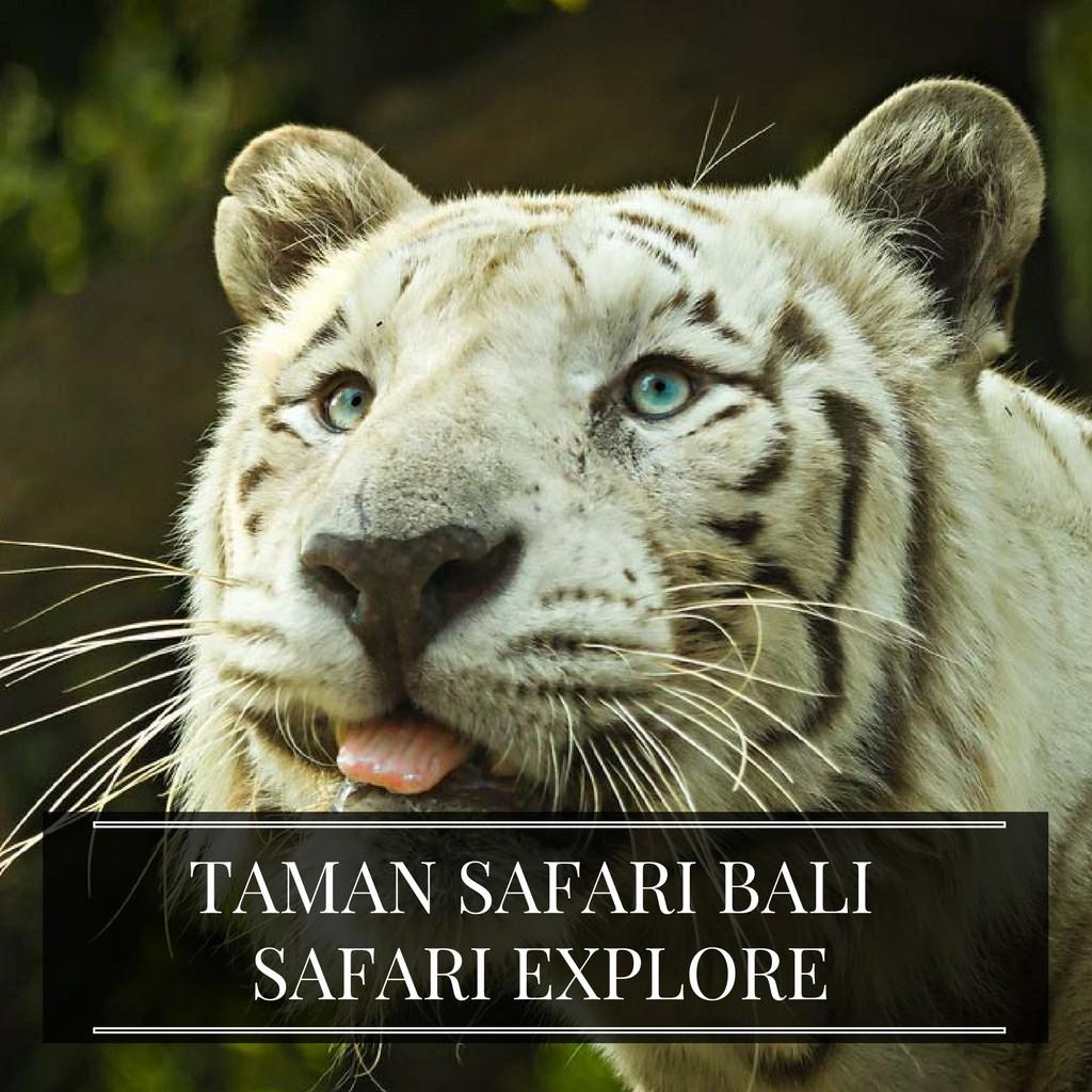 Tiket Bali Safari And Marine Park Shopee Indonesia Odyssey Submarine Balita Tanpa Transport