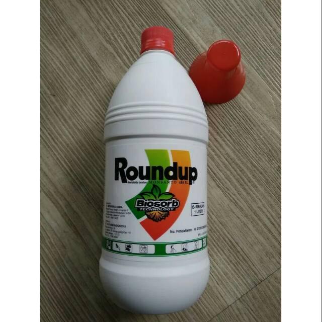 Roundup 486 SL - Herbisida Sistemik - 200 ml. Source · RUMPUT KERING SEKETIKA DENGAN