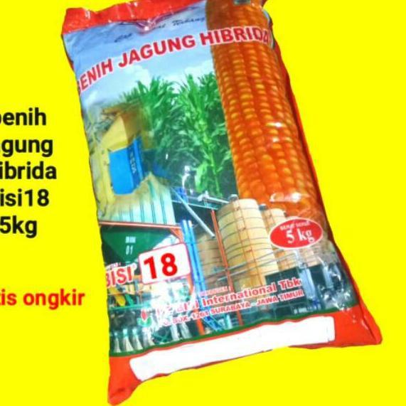 LIMITED Benih Jagung bisi 18 Hibrida Bisi18 kemasan 5kg.. .. ..
