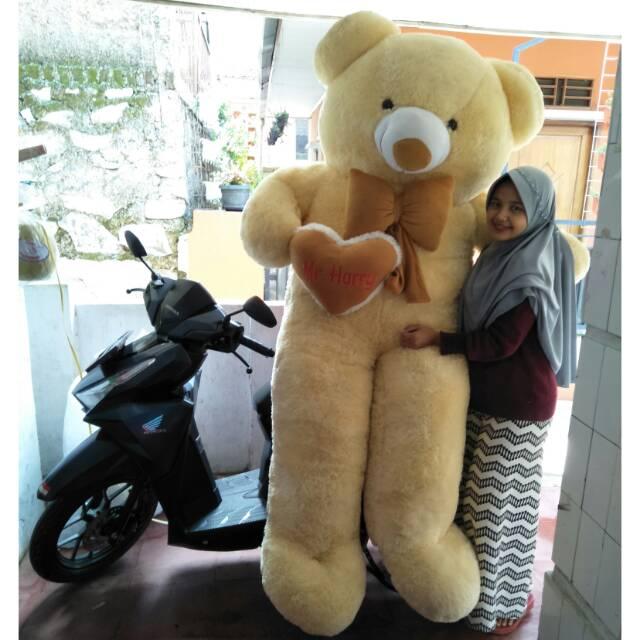 Boneka beruang 2 meter raksasa termurah  cb170e5f6b