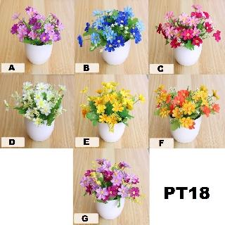 fygalery pot tanaman bunga dekorasi rumah tanaman hias