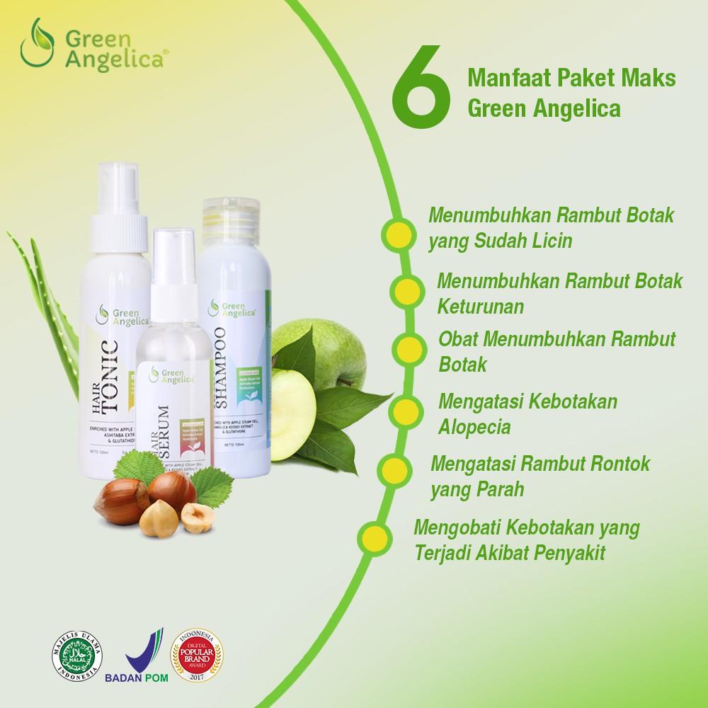 Obat penumbuh rambut botak - Rontok asli Green Angelica Paket Lengkap  Penumbuh Rambut Ampuh  fac9800a4b
