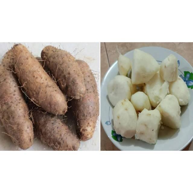 Obral Buah Diabetes Uwi Gembili 1 2 Kilo Shopee Indonesia