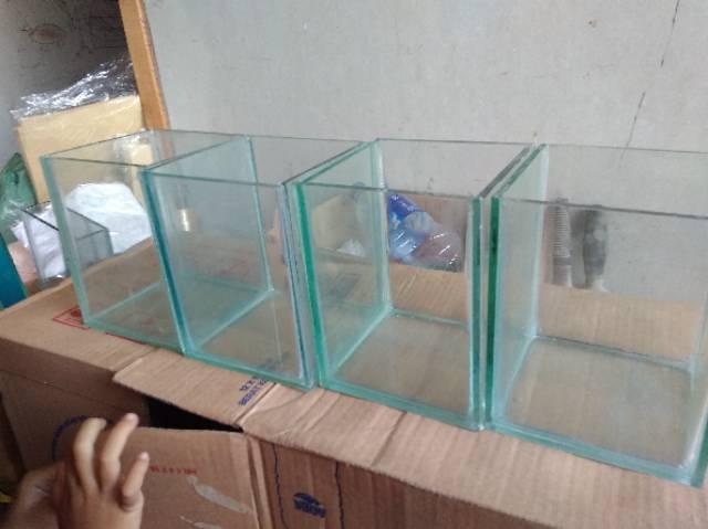 Aquarium Ikan Cupang Ukuran 12x12x15 Murah Shopee Indonesia