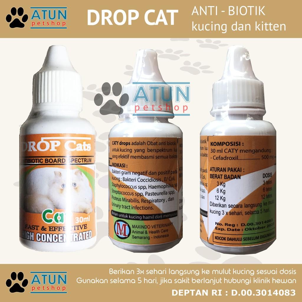Obat Kucing Luka Infeksi Demam Antibiotik Drop Cat Atau Caty Drop Terdaftar Deptan Shopee Indonesia