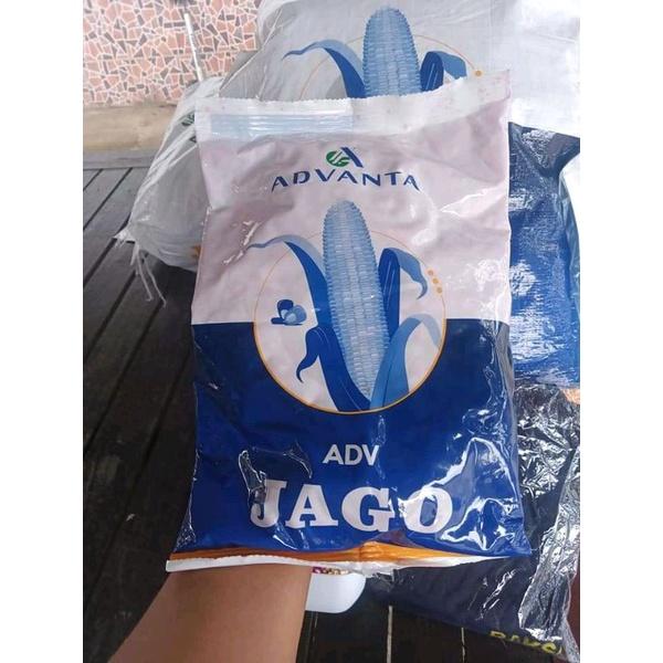 ADV JAGO / PAC 789 RAKSASA ORIGINAL PABRIK