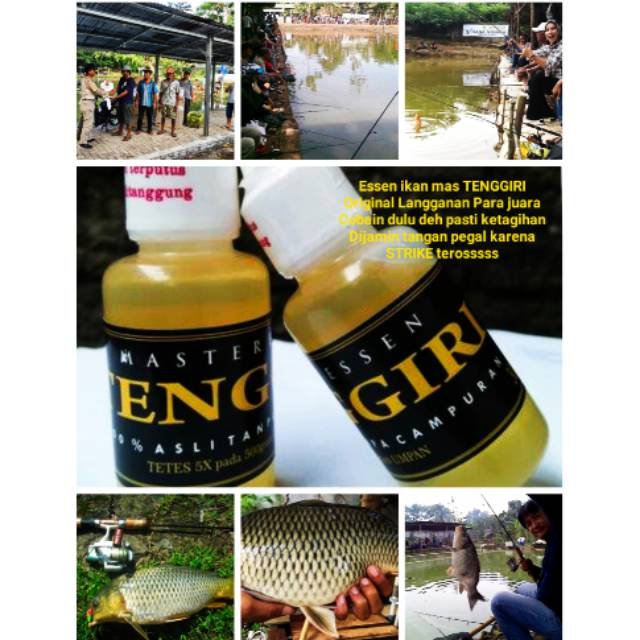 Essen Tenggiri Campuran Racikan Umpan Mancing Ikan Mas Kecil Besar Babon Rahasia Esen Bagus Amis Shopee Indonesia