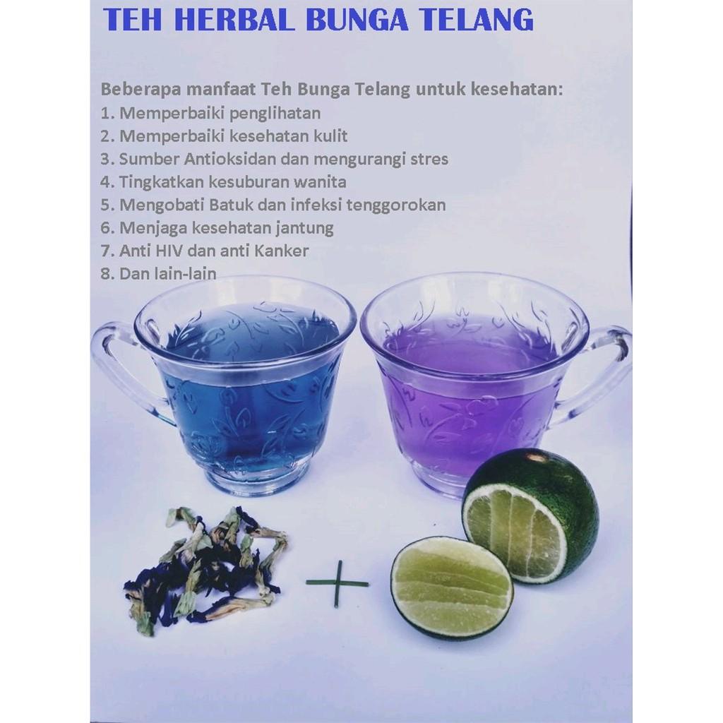 Bunga Telang Kering Teh Bunga Telang Blue Tea Teh Telang Organik Telang Organik Shopee Indonesia