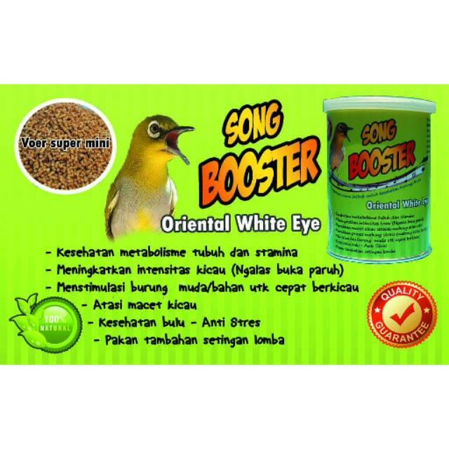 Song Booster Oriental White Eye Pakan Burung Poer Voer Makanan Khusus Pleci Vitamij Multivitamin   Shopee Indonesia