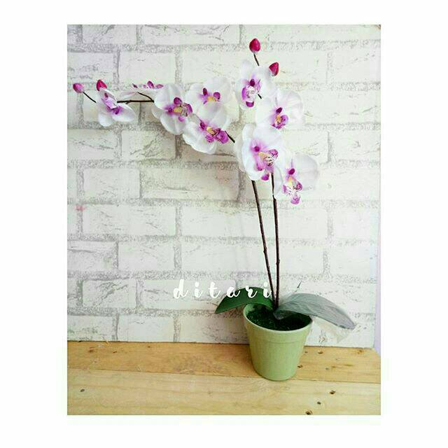 Bunga anggrek palsu palstik artificial artifisial dekorasi rumah shabby chic   6b3efef9e9