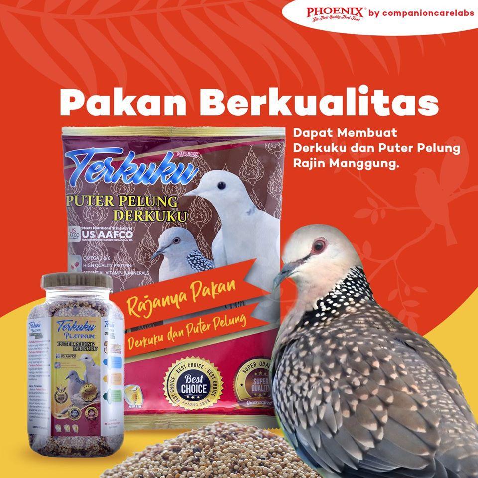 Phoenix Terkuku Puter Pelung Derkuku Sachet Shopee Indonesia