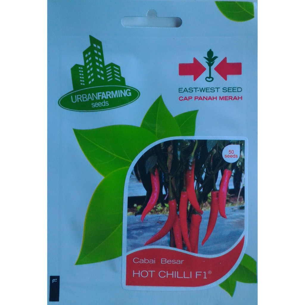 Benih Tomat Tora Ipb Shopee Indonesia Labu Kuning Lk1