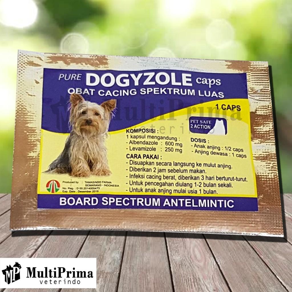 Obat Cacing Anjing Dogyzole Caps Shopee Indonesia