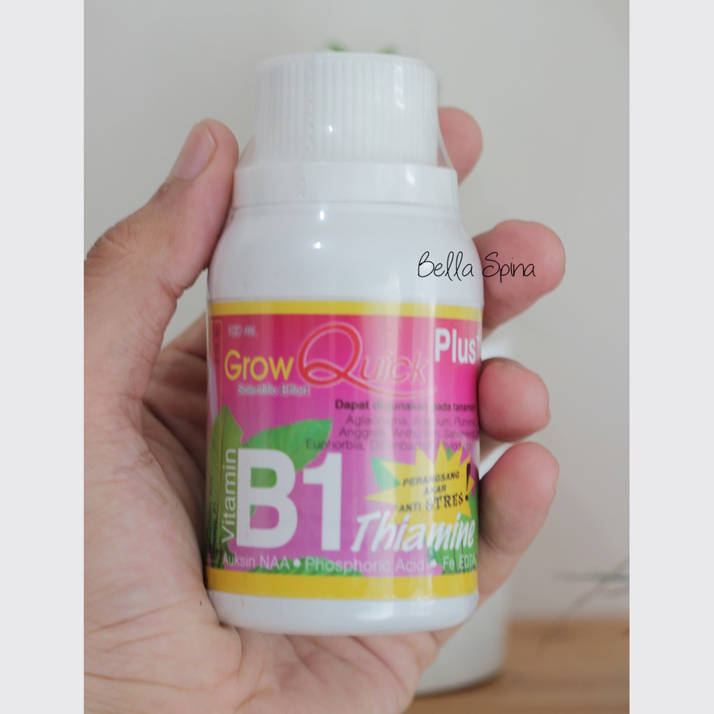 Best Seller Vitamin B1 Antri Stress Perangsang Akar Tanaman Pk 09 Shopee Indonesia
