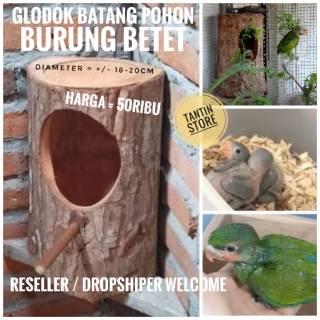 Glodok Burung Betet Alami Batang Pohon Shopee Indonesia