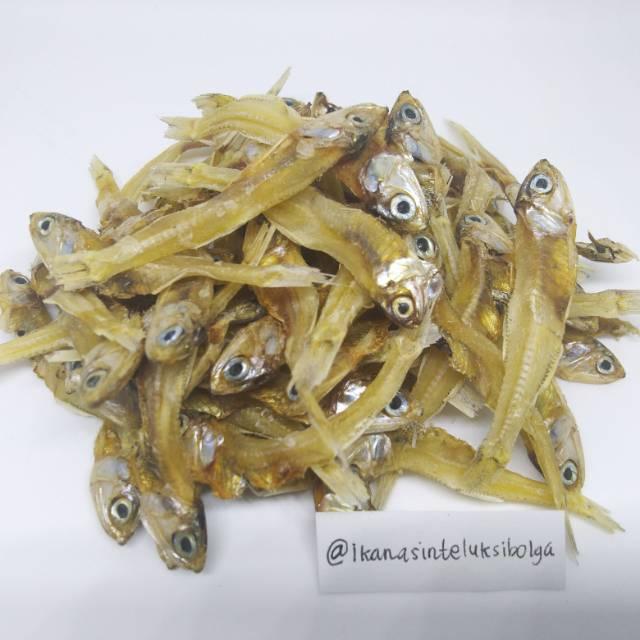 kg ikan teri tawar asli sibolga fresh  dijamin puas shopee indonesia Resepi Ikan Bakar Utara Enak dan Mudah