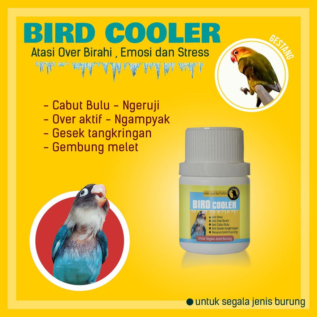Bird Cooler Anti Over Birahi Cabut Bulu Dan Burung Stres Lovebird Kenari Murai Batu Kacer Shopee Indonesia