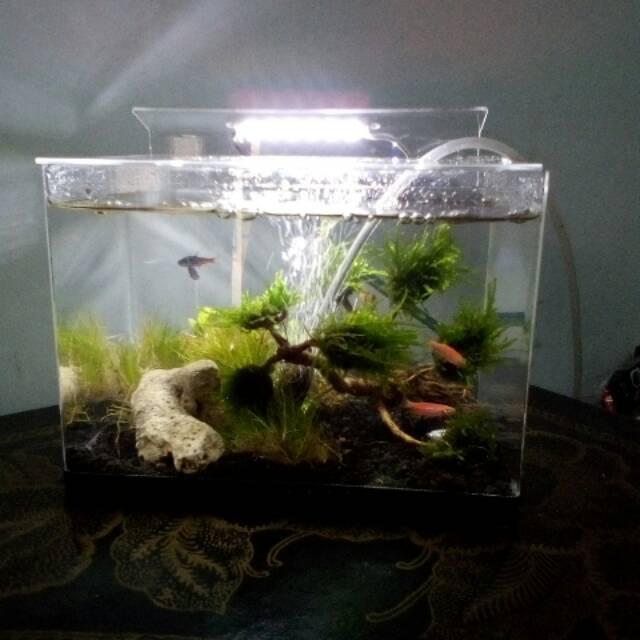 Aquarium Aquascape Mini Portable Akrilik Shopee Indonesia