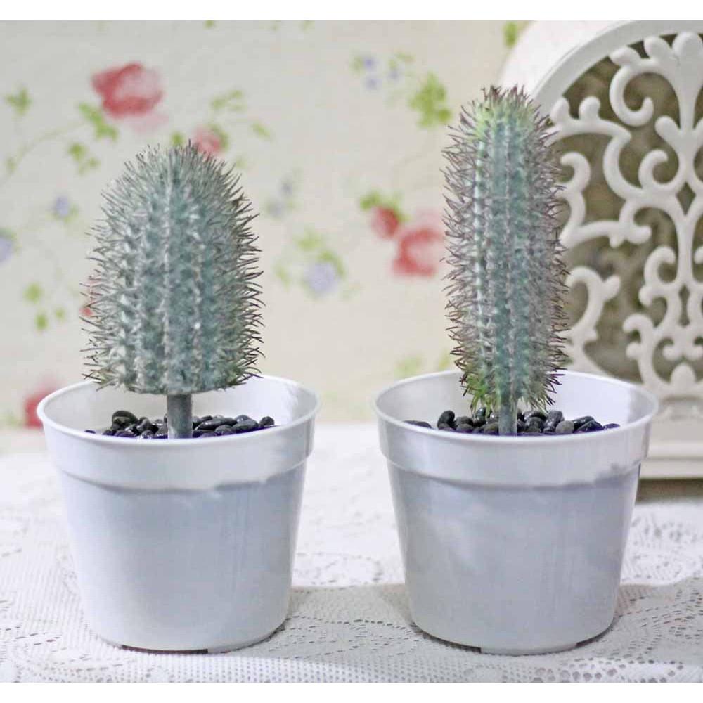 Pajangan Kaktus Cactus Artificial Pot Plastik Shabby Chic 2 - Daftar ... 259981e4f4