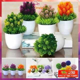 ~cod~ do-c28-32 ornamen pot bonsai tanaman bunga pajangan