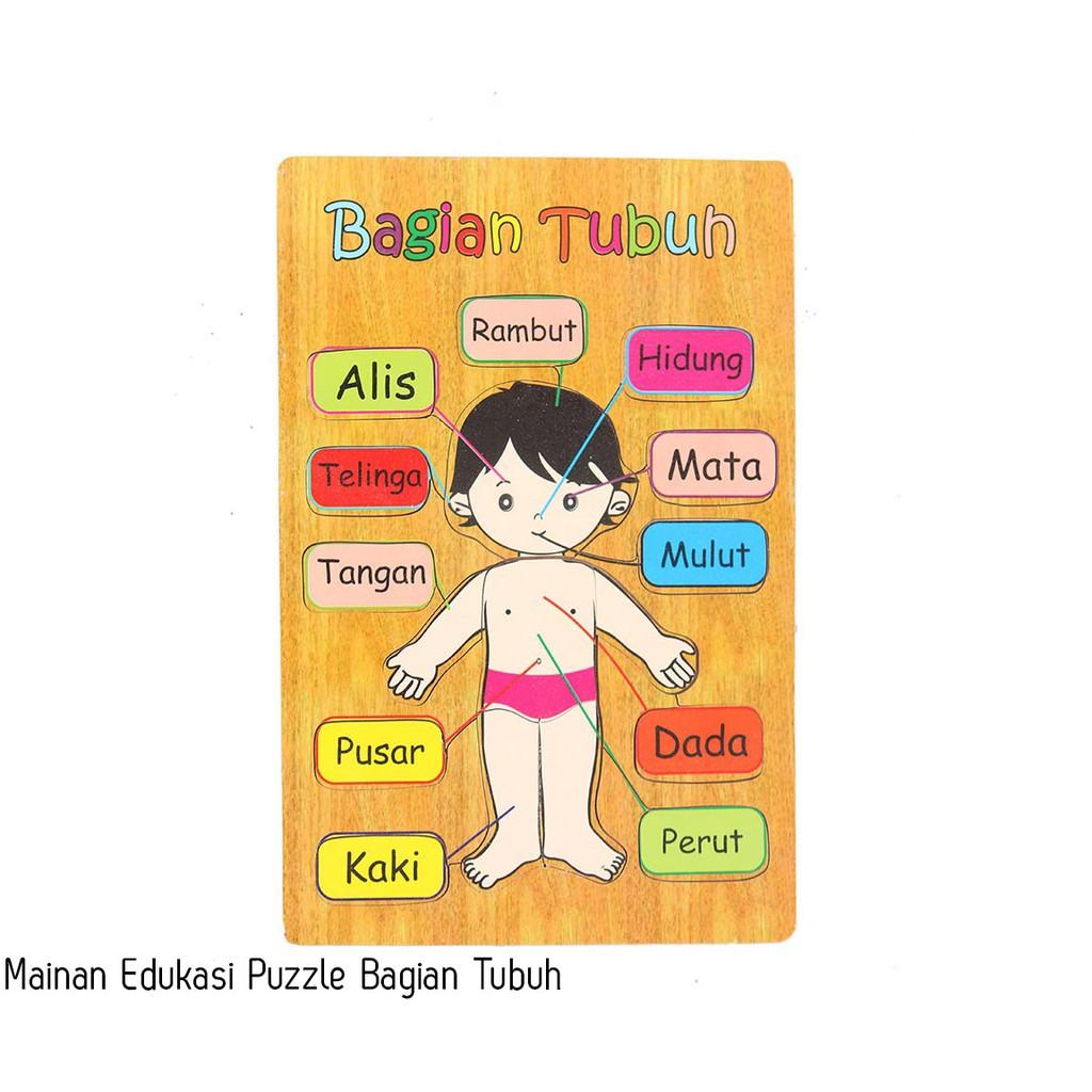 Mainan Edukatif Puzzle Anggota Tubuh Shopee Indonesia